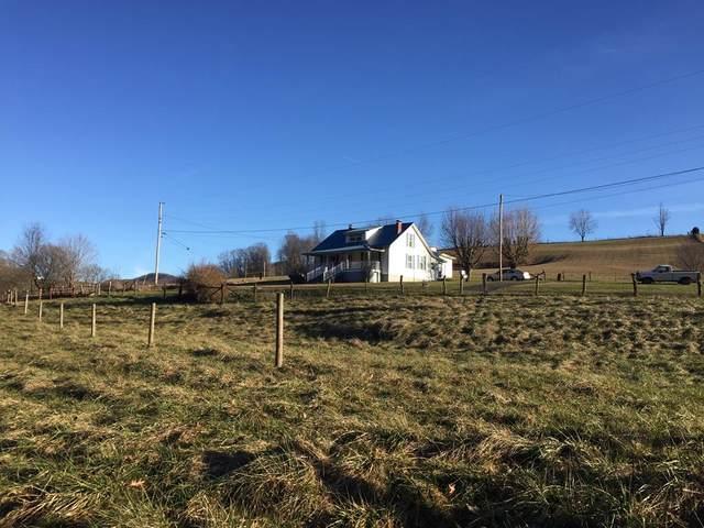850 Clinch Mountain Road, Lebanon, VA 24266 (MLS #73538) :: Highlands Realty, Inc.