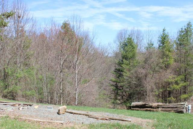 TBD Starview Lane, Galax, VA 24333 (MLS #73654) :: Highlands Realty, Inc.
