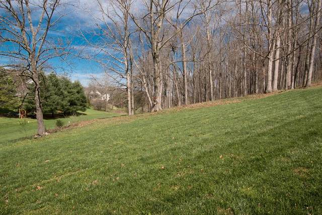 Lot 114 Clifton Ridge Road, Abingdon, VA 24211 (MLS #73671) :: Highlands Realty, Inc.