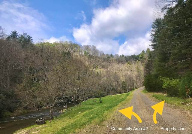 TBD Graymont Lane, Woodlawn, VA 24381 (MLS #73741) :: Highlands Realty, Inc.