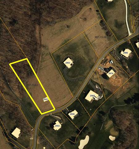 Lot 62 Big Valley Drive, Draper, VA 24324 (MLS #73758) :: Highlands Realty, Inc.