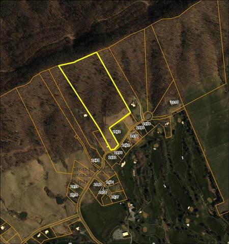 Lot 60 Big Valley Drive, Draper, VA 24324 (MLS #73759) :: Highlands Realty, Inc.