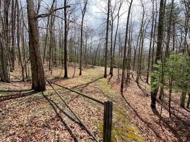 3086 Wyrick Trail, Bland, VA 24315 (MLS #73781) :: Highlands Realty, Inc.