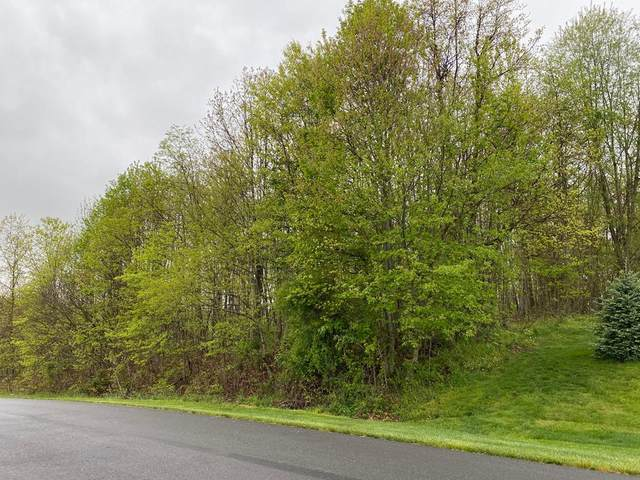 TBD Mill Creek Acres, Lebanon, VA 24266 (MLS #74023) :: Highlands Realty, Inc.