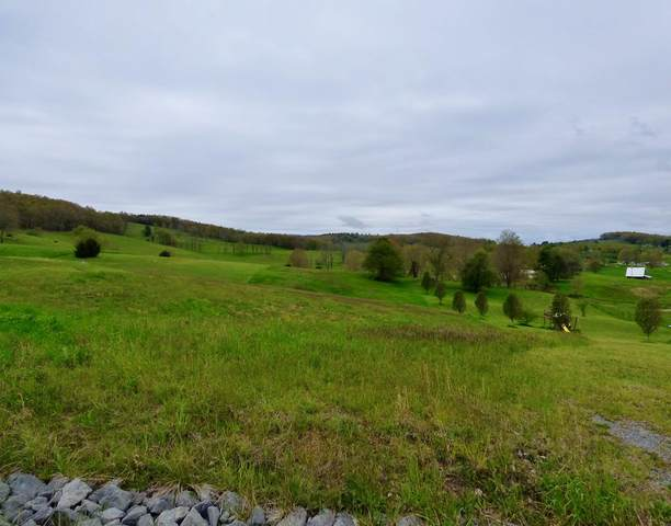 TBD Big Ben Dr., Bland, VA 24315 (MLS #74083) :: Highlands Realty, Inc.