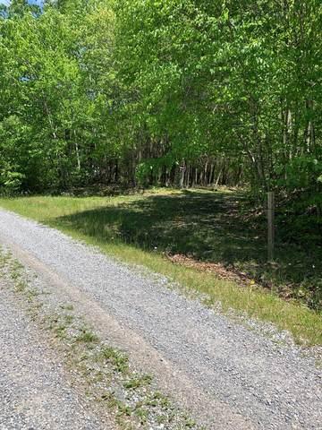 TBD N Chinquapin, Bland, VA 24315 (MLS #74258) :: Highlands Realty, Inc.