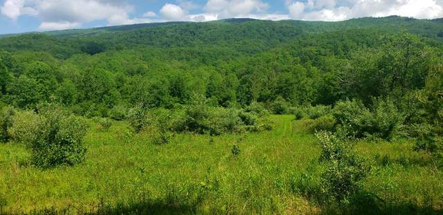TBD Poor Valley Road, Bland, VA 24315 (MLS #74485) :: Highlands Realty, Inc.