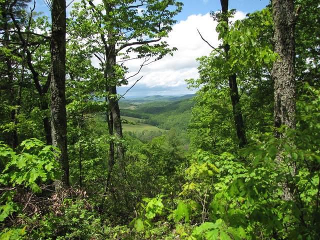 TBD Patch Drive, Cripple Creek, VA 24314 (MLS #74486) :: Highlands Realty, Inc.