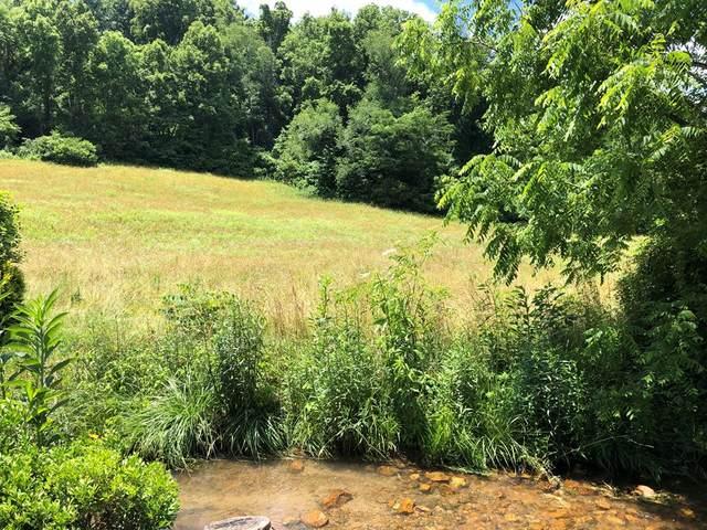 TBD Denton Valley Road, Abingdon, VA 24211 (MLS #74522) :: Highlands Realty, Inc.