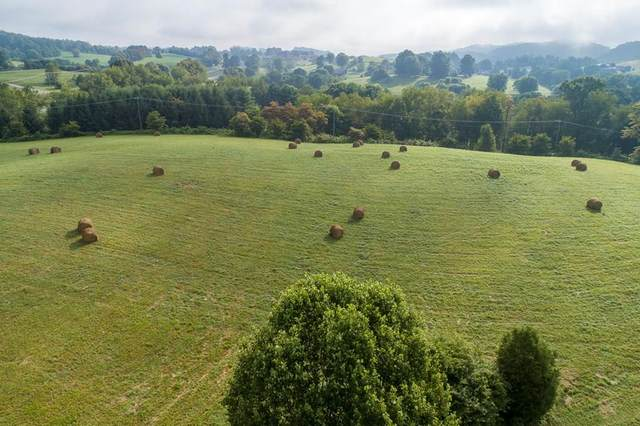 TBD York Drive, Abingdon, VA 24211 (MLS #74553) :: Highlands Realty, Inc.
