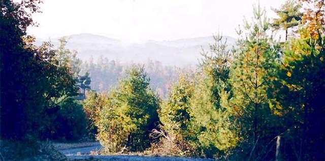 0 Chestnut Falls Lane, Galax, VA 24333 (MLS #74561) :: Highlands Realty, Inc.