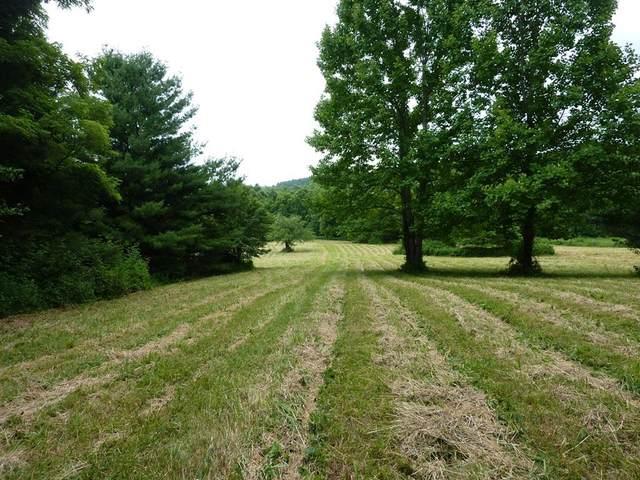TBD Free Union Road, Meadows of Dan, VA 24120 (MLS #74709) :: Highlands Realty, Inc.