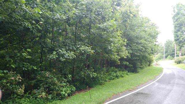 TBD Mountaineer Way, Fancy Gap, VA 24328 (MLS #74719) :: Highlands Realty, Inc.