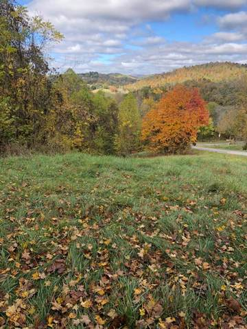 TBD Ollis Bowers Hill Rd, Kingsport, TN 37664 (MLS #74779) :: Highlands Realty, Inc.
