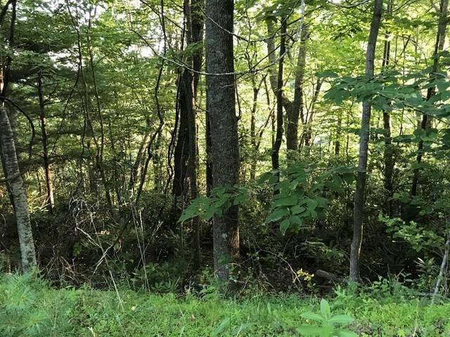 I-3 Oak Ridge Trl, Fancy Gap, VA 24328 (MLS #74790) :: Highlands Realty, Inc.