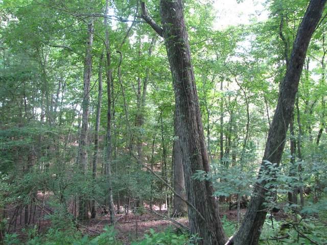 TBD Hidden Pond Lane, Max Meadows, VA 24360 (MLS #74802) :: Highlands Realty, Inc.