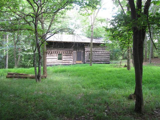 650 Pleasant Pine Drive, Max Meadows, VA 24360 (MLS #74803) :: Highlands Realty, Inc.