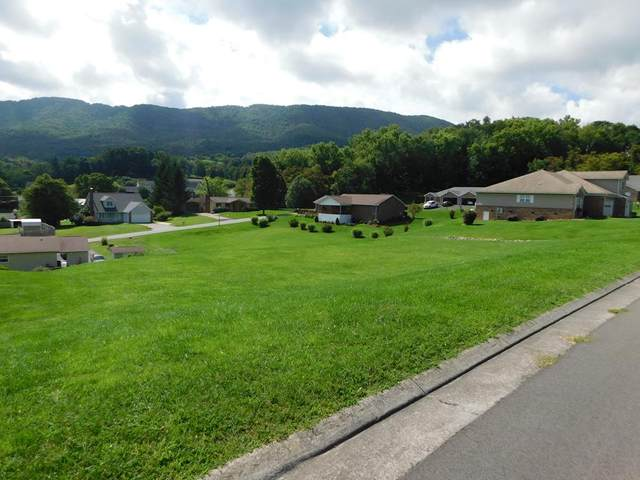 102 Forest Hill Drive, Tazewell, VA 24651 (MLS #75414) :: Highlands Realty, Inc.