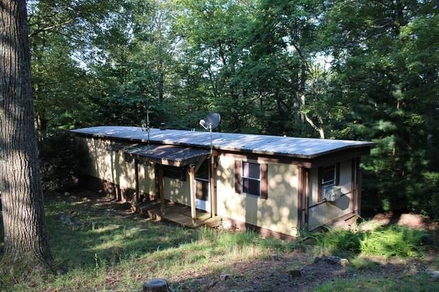 778 Apache Trail, Fancy Gap, VA 24328 (MLS #75497) :: Highlands Realty, Inc.