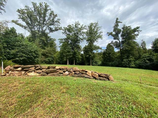 TBD East Pheasant Chase, Fancy Gap, VA 24328 (MLS #75545) :: Highlands Realty, Inc.