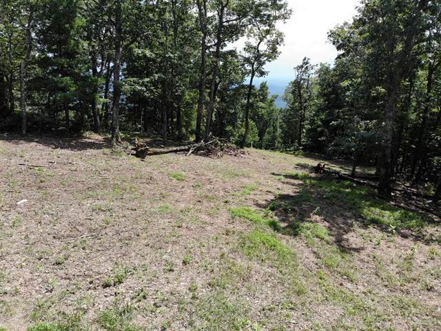 TBD Old Home Trail, Fancy Gap, VA 24328 (MLS #75546) :: Highlands Realty, Inc.