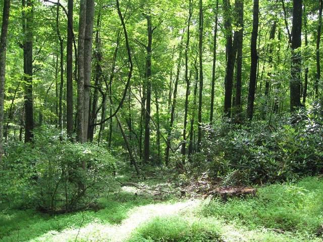 TBD Old Hollow Trail, Fancy Gap, VA 24328 (MLS #75627) :: Highlands Realty, Inc.