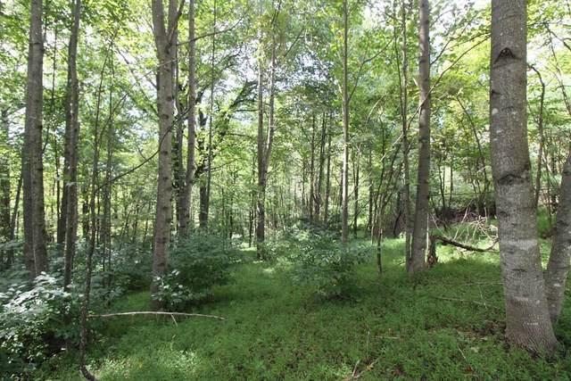 Lot 33 Powhatan Trail, Fancy Gap, VA 24328 (MLS #75812) :: Highlands Realty, Inc.