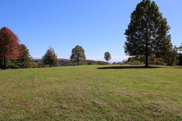 TBD Dogwood Ridge Rd, Fancy Gap, VA 24328 (MLS #75983) :: Highlands Realty, Inc.