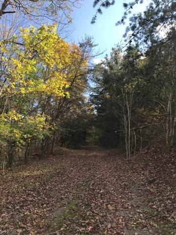1 Beechwood Hill, Bluefield, VA 24605 (MLS #76011) :: Highlands Realty, Inc.