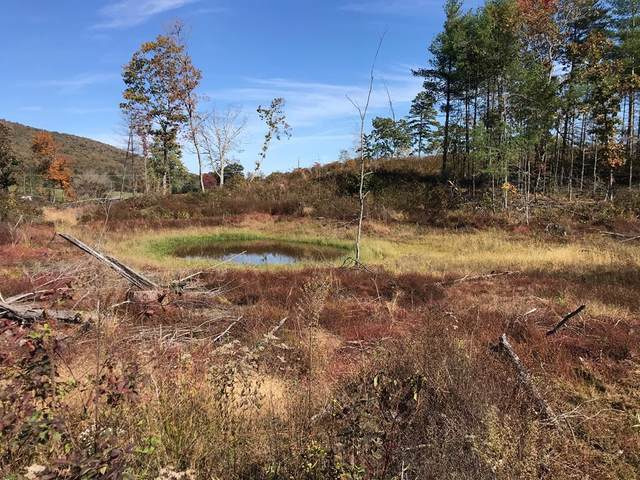 17.52 Ac Lots Gap Road, Max Meadows, VA 24360 (MLS #76037) :: Highlands Realty, Inc.
