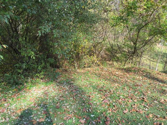 TBD Terry Drive, Richlands, VA 24641 (MLS #76059) :: Highlands Realty, Inc.