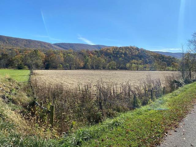 TBD Point Pleasant Rd, Bland, VA 24315 (MLS #76107) :: Highlands Realty, Inc.