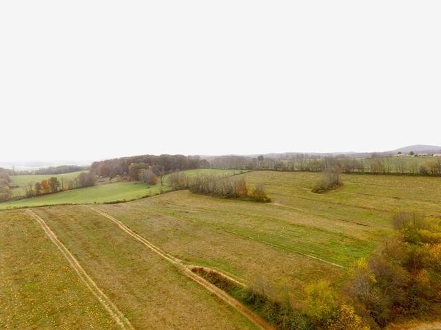 Lot 3 Milk Plant Road, Rural Retreat, VA 24368 (MLS #76141) :: Highlands Realty, Inc.