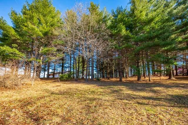 Lot 18 Olympus Drive, Fancy Gap, VA 24328 (MLS #76146) :: Highlands Realty, Inc.