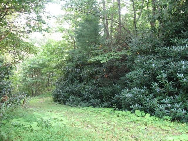TBD Flint Ridge Trail, Fancy Gap, VA 24328 (MLS #76171) :: Highlands Realty, Inc.