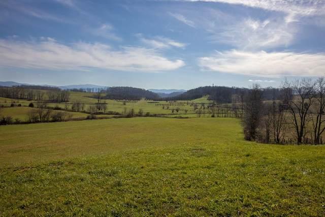 TBD Hawthorne Dr, Meadowview, VA 24361 (MLS #76385) :: Highlands Realty, Inc.