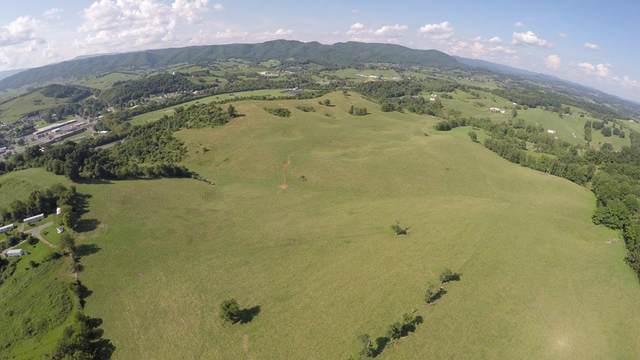 TBD Tattle Branch Road, Chilhowie, VA 24319 (MLS #76536) :: Highlands Realty, Inc.