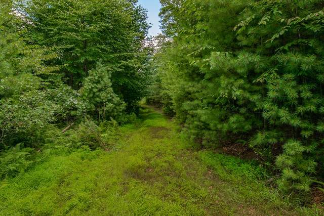 TBD Pipers Woods Dr, Galax, VA 24333 (MLS #76584) :: Highlands Realty, Inc.