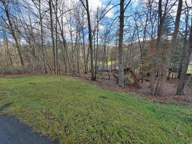 TBD Cypress Drive, Marion, VA 24354 (MLS #76699) :: Highlands Realty, Inc.