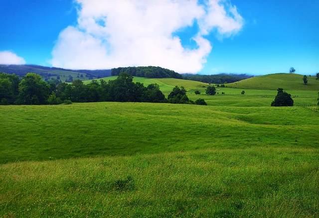 TBD Gose Mill Road, Tazewell, VA 24651 (MLS #76785) :: Highlands Realty, Inc.