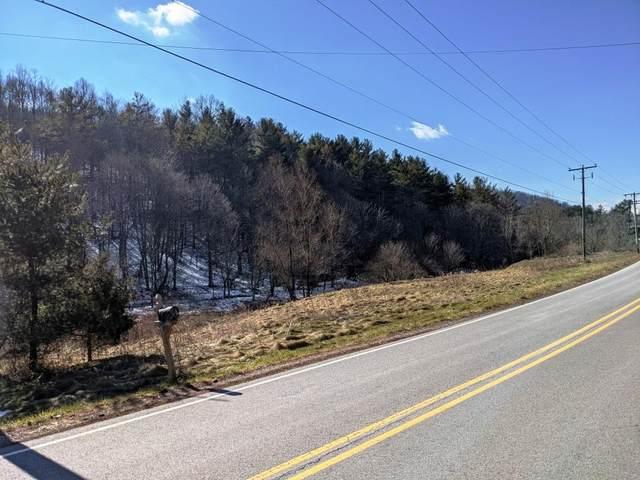 41 acres Blue Grass Trl, Bland, VA 24315 (MLS #76826) :: Highlands Realty, Inc.