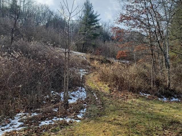 TBD Green Valley Rd, Fries, VA 24330 (MLS #76848) :: Highlands Realty, Inc.