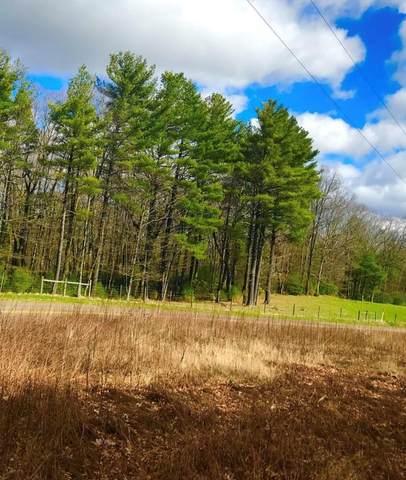 Tbd Harrison Dr., Fancy Gap, VA 24328 (MLS #76852) :: Highlands Realty, Inc.
