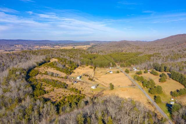 53 acres Locust Hill Rd, Max Meadows, VA 24360 (MLS #77211) :: Highlands Realty, Inc.