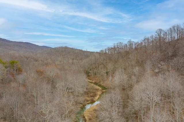 116 Acre Mud Fork Rd, North Tazewell, VA 24630 (MLS #77472) :: Highlands Realty, Inc.