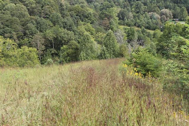 TR. 40 Armstrong Hollow Lane, Rich Valley, VA 24370 (MLS #77513) :: Highlands Realty, Inc.