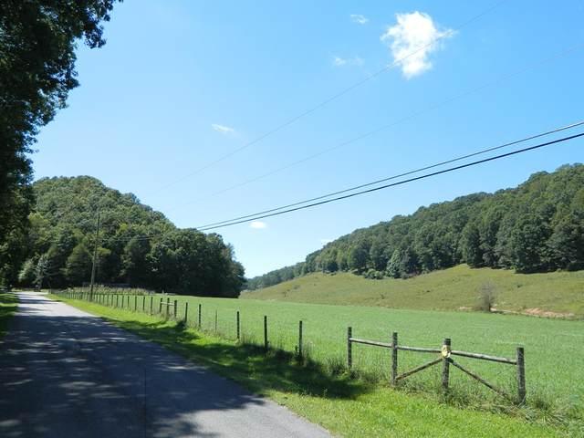 TBD Matson Drive, Marion, VA 24354 (MLS #77684) :: Highlands Realty, Inc.