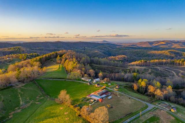 01746 Ridge Rd, Austinville, VA 24312 (MLS #77859) :: Highlands Realty, Inc.