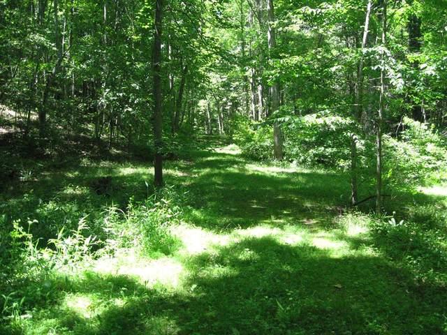 TBD Moorewood Lane, Hillsville, VA 24343 (MLS #77969) :: Highlands Realty, Inc.