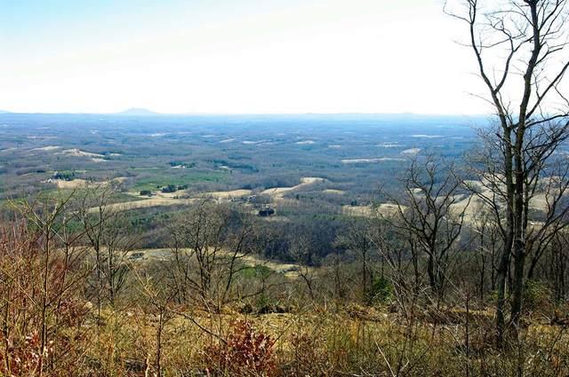 TBD Spring Pond Trail, Fancy Gap, VA 24328 (MLS #77988) :: Highlands Realty, Inc.